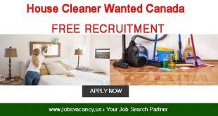 house cleaner job