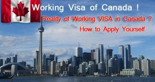 How to Apply Working Visa of Canada Yourself