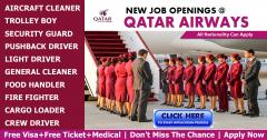 Jobs Vacancy - Job Opportunities